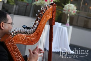 Orange County Wedding Harpist
