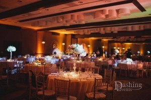 Uplighting & Pinspot Lighting