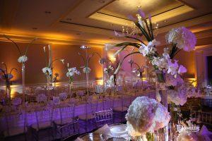 Ritz Carlton Marina Del Rey uplighting and pinspot lighting